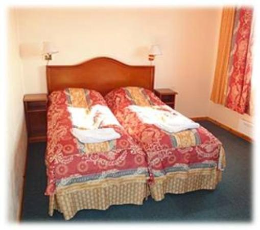The White Reindeer Motel : Double room