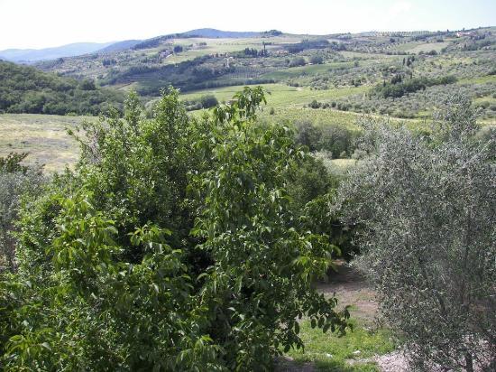 La Pieve: Panorama dalla camera