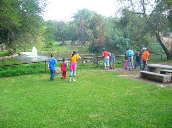 Zoologico Guadalajara: Fuente en el ingreso