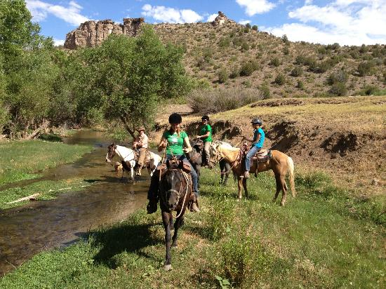 Beautiful Lush Country Picture Of Cowboy Way Adventures