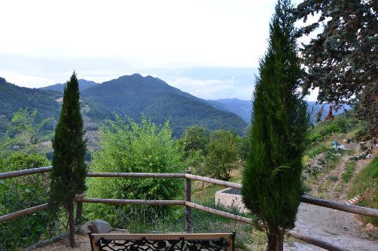 Case Vacanze Podere Ugolini: Vista dal terrazino del nostro alloggio