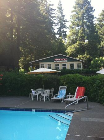 Fern Grove Cottages: View of the clubhouse from the pool