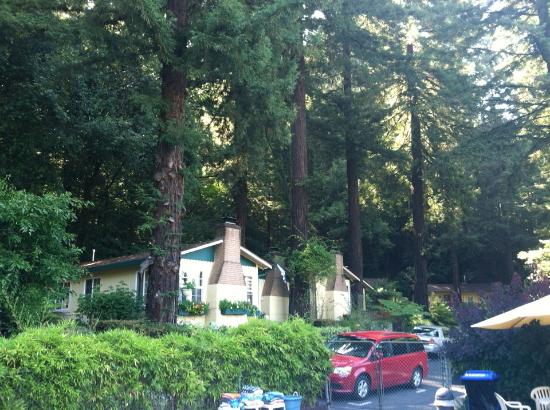 Guerneville, Kalifornien: View of the cabins from the pool
