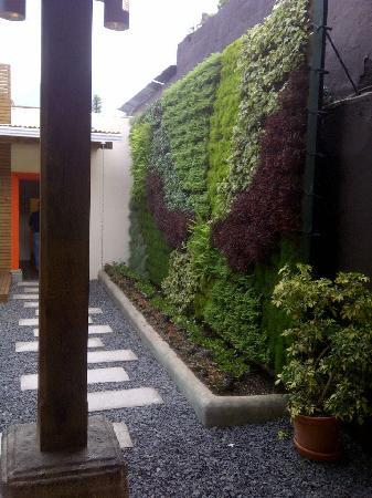 Wokco's Green Wall