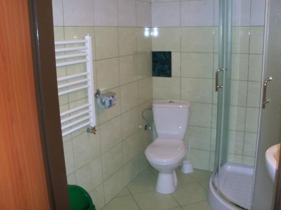 Hotel Best Inn : Sparkling bathroom with large shower, note the blue TP - the next day it was yellow!