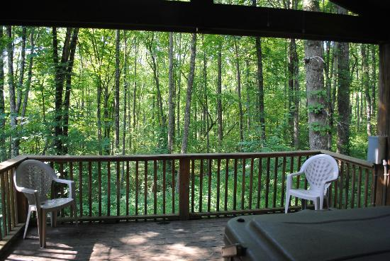 Old Man's Cave Chalets: View off of the aframes covered back porch.