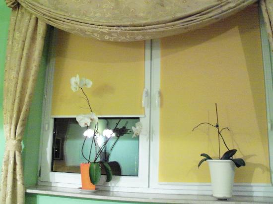 Hotel Best Inn : Even the windowshades are cheerful!