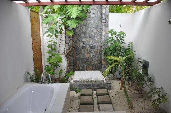 plante verte pour salle de bain stunning plantes vertes. Black Bedroom Furniture Sets. Home Design Ideas