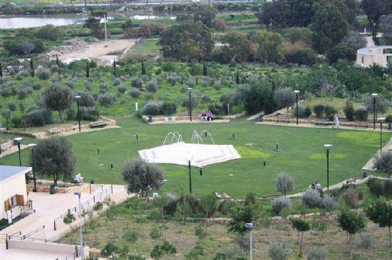 Garden Centre: Melita Gardens Salina, Island Of Malta