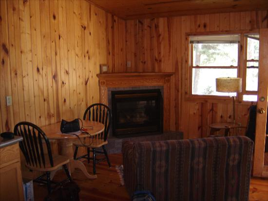 Pine Rest Cabins: Front Room