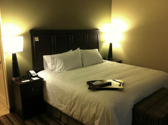 Hampton Inn Augusta: King Bedded Room