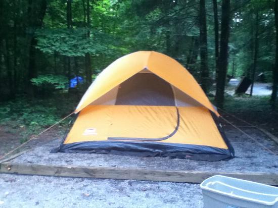 Cataloochee Campground: Invidiual Area