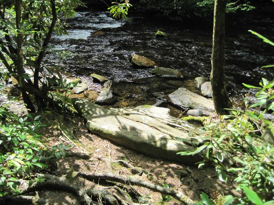 Cataloochee Campground: Creek beside campsite