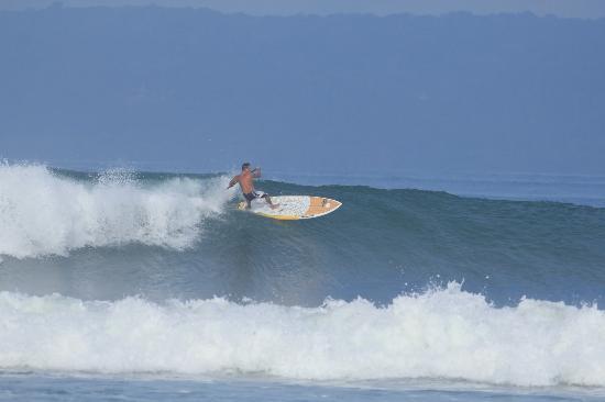 Agua Vida Surf: Pavones SUP camps