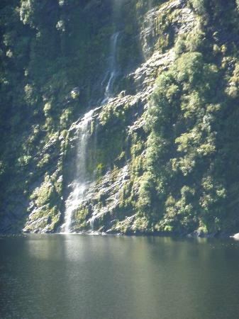 Doubtful Sound Small Boat Cruises Day Trip - Real Journeys: waterfall in doubtful sound