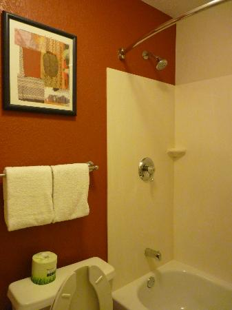 Red Roof PLUS+ Statesville: Bathroom