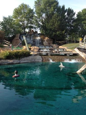 Pirate's Cove Mini Golf: sharks in the water