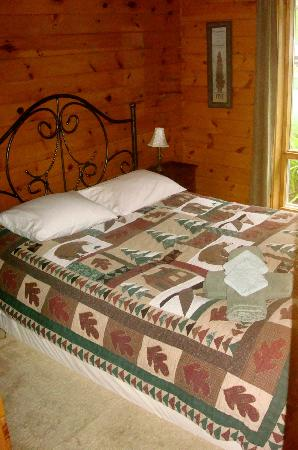 Coyote's Den Guesthouse: Bedroom