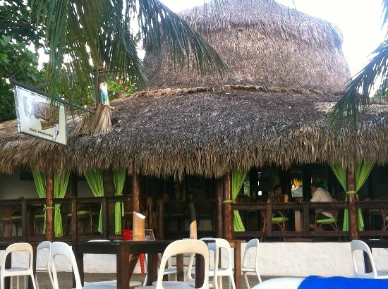 Lazy Dog Beach Bar and Grill Cabarete : The Lazy Dog Beach Bar and Grill...Hut