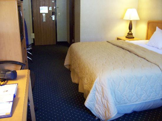 Quality Inn & Suites South: Bed
