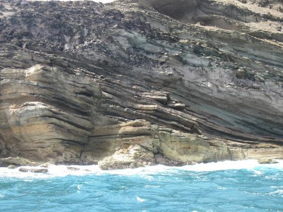 Treasure Island Cruises - Day Tours: rock formations
