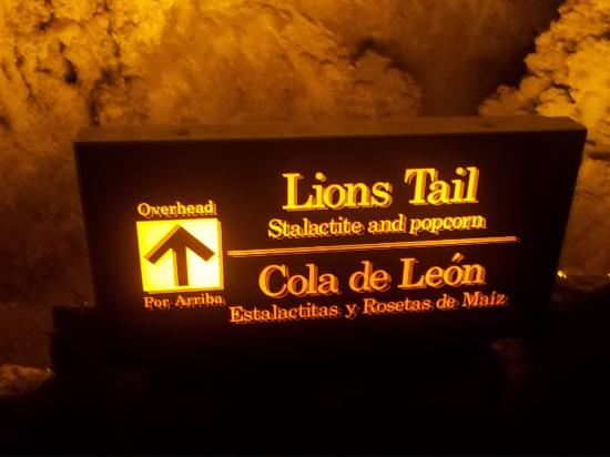 Lion's Tail: Lions Tail sign - best pic I took of the area - sadly.