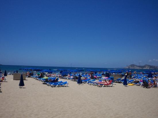 Vina del Mar Apartments: Levante Beach