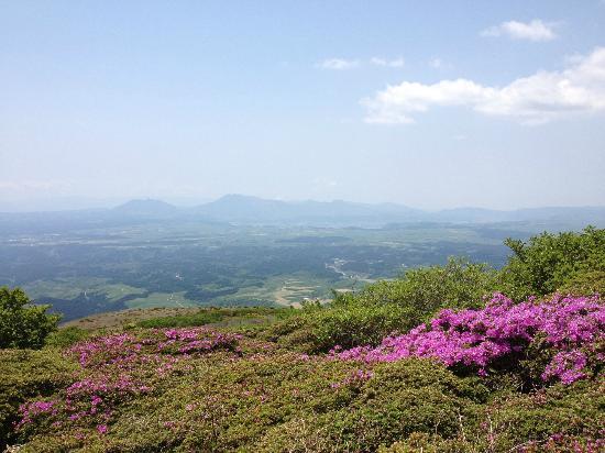 Mt. Kuju: 扇ヶ鼻より阿蘇五岳を臨む