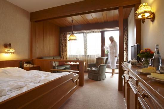 AKZENT Landgasthof Der Hirsch: Room View