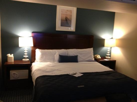Ramada Plaza Geneva Lakefront Resort: The bed is nice!