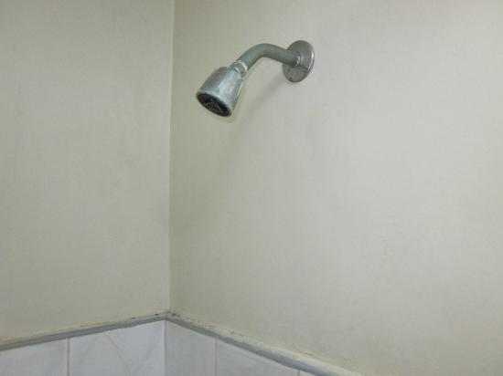 NS Royal Pensione : Shower