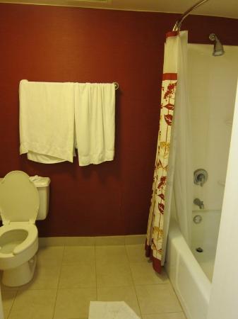 Courtyard Los Angeles LAX/El Segundo: bath room nice and clean