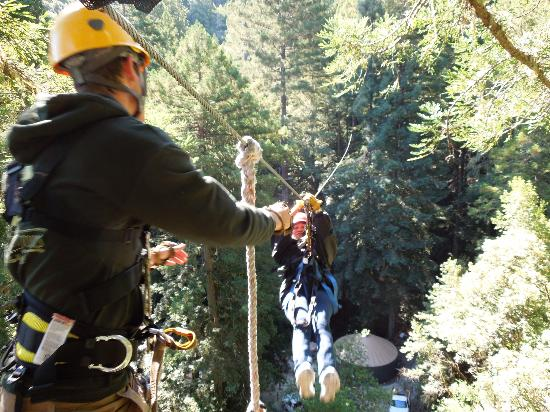 Sonoma Canopy Tours: Coming in for a landing