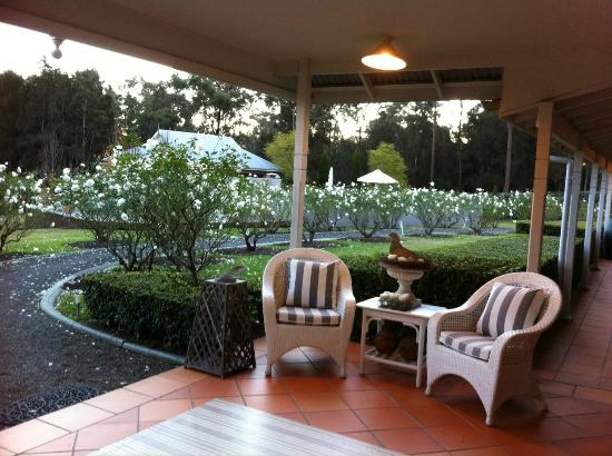 Thistle Hill Guest House: Reception and surrounding rose bushes