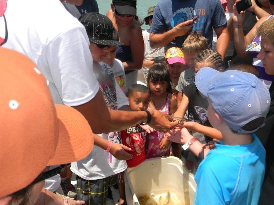 Isla Tours: The kids had so much fun...such a blast!