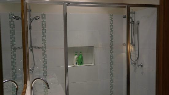 Limpinwood Lodge: The double shower