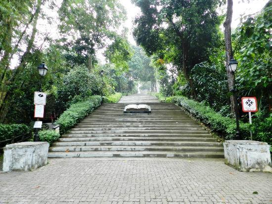 武吉巴督自然公園