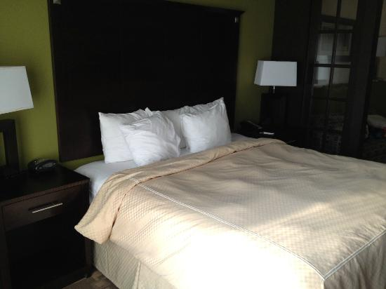 Comfort Suites Lake City: Comfortable Beds