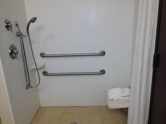 ‪كومفرت سويتس ليك سيتي: Shower is huge: Handicap bathroom