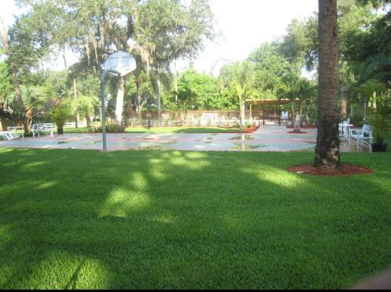 Tropical Resort and Marina: Basketball Court
