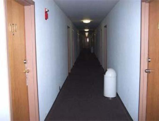 Knights Inn - Wilmington: Interior Corridor