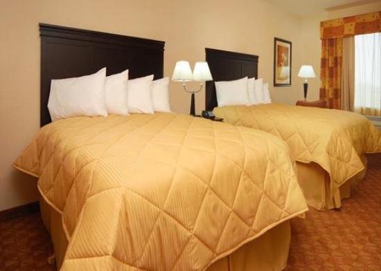 كومفرت إن نير يو إن تي: Guest Room