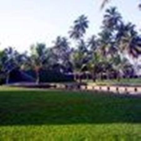 Photo of The Blue Water Wadduwa