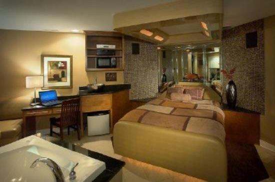 Champagne Lodge and Luxury Suites: Standard Suite