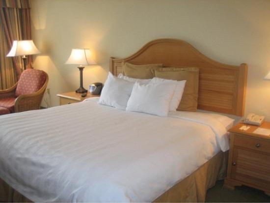 Monumental Hotel Orlando : Bedroom