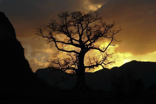Valle de Vinales: Atardecer en el Valle de Viñales