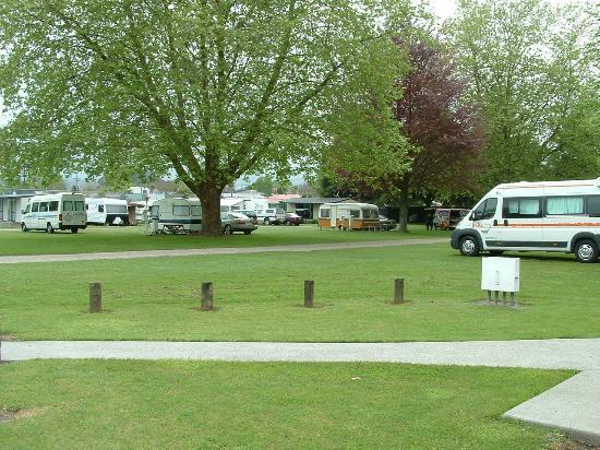 Cambridge Motor Park: Powered Sites