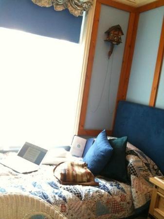 Red Brighton Blue : alpine room bed