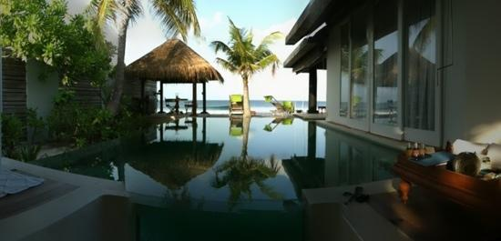 Naladhu Resort Maldives : pool - ocean villa