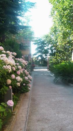 Villa dei Platani Boutique Hotel & Spa: Vialetto d'ingresso all'hotel